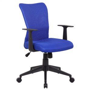 ys01-ashley-blue