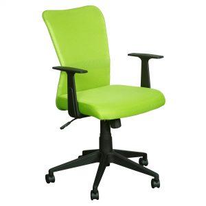 ys01-ashley-green